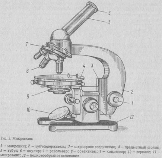 Микроскоп и техника