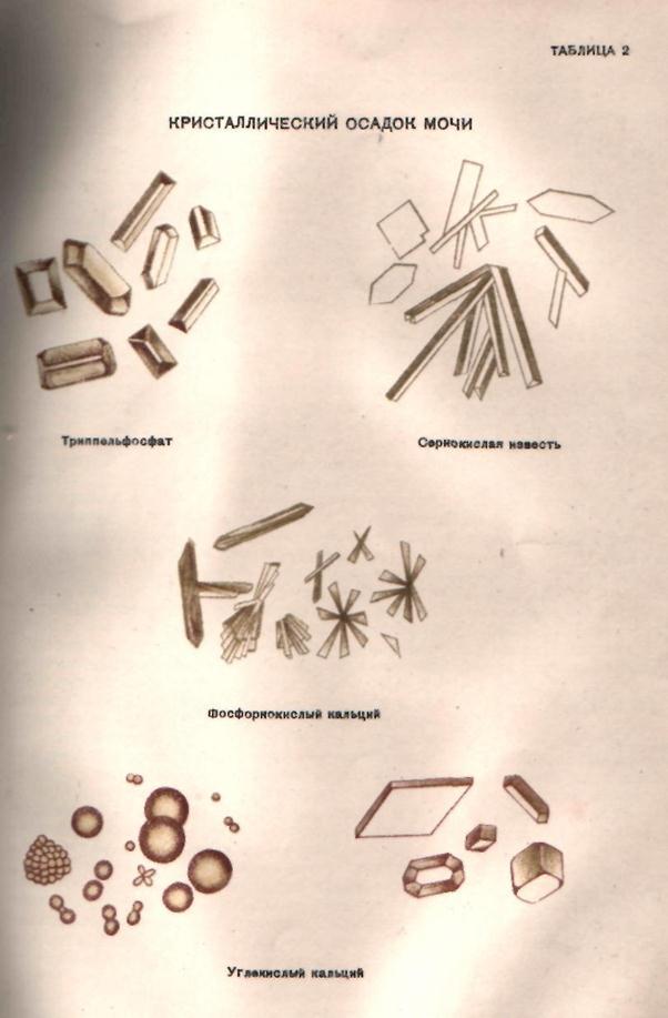 как очиститься от глистов народными средствами